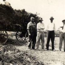 """""""Give me your farmers"""" – Belgische migranten in Canada in 1929"""